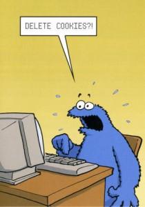 EU Cookie Law - delete cookies?
